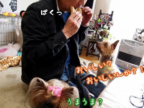 4_20100507193431.jpg