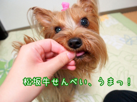 4_20100618170804.jpg