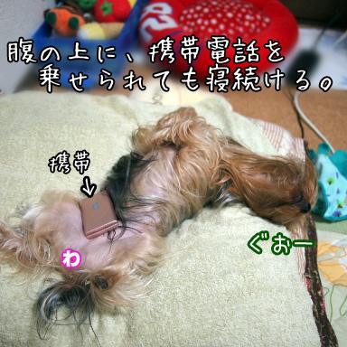 4_20100728185928.jpg