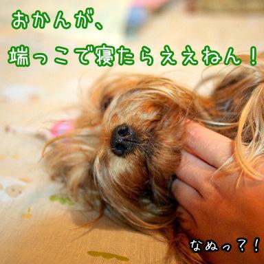 4_20100803192234.jpg
