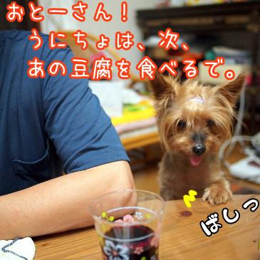 4_20100824180931.jpg