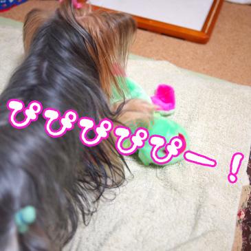 4_20100911192600.jpg