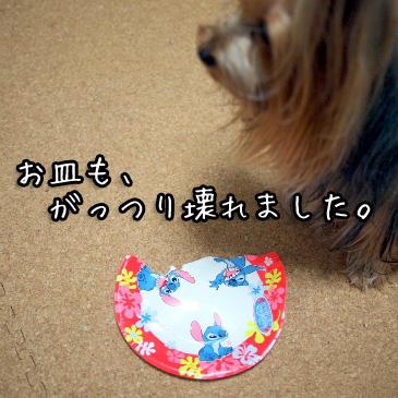 4_20100917200634.jpg