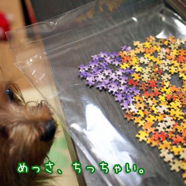 4_20101025190756.jpg