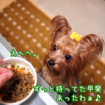 4_20101109195631.jpg