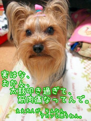 6_20100215194208.jpg