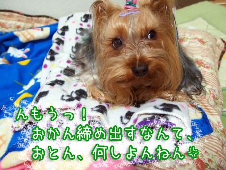 6_20100220202010.jpg