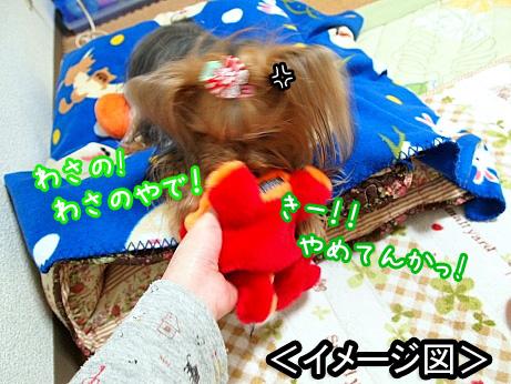 6_20100304174532.jpg