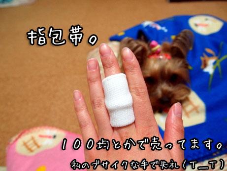 6_20100427194250.jpg
