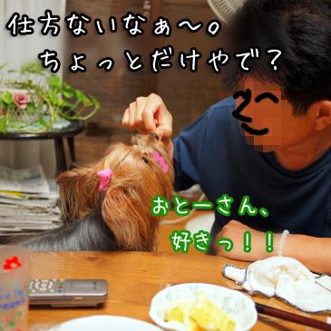 6_20100824180931.jpg
