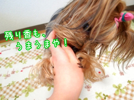 7_20100224170539.jpg