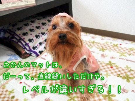 7_20100308165840.jpg