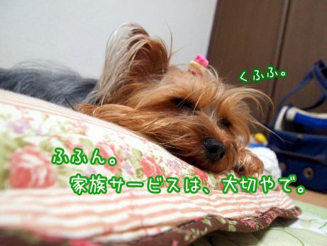 7_20100531193046.jpg