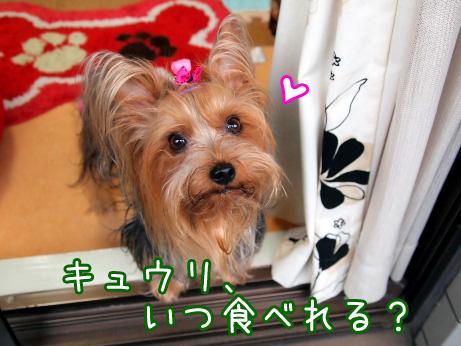 7_20100608181110.jpg