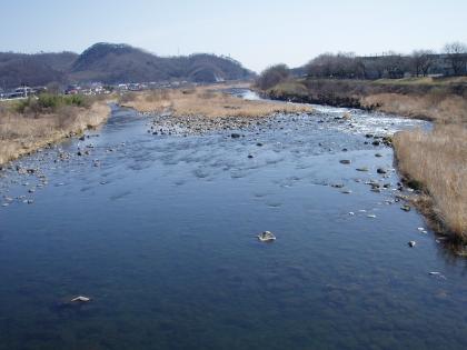 相川橋下流_1003