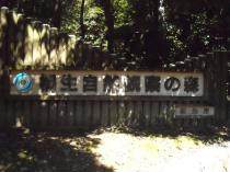 自然観察の森_20100926