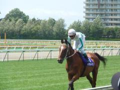 返し馬:メジロライアン