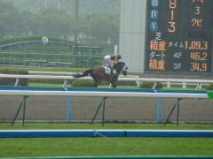 返し馬:ラプスドール