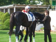 パドック:レッドバビロンとルメール騎手