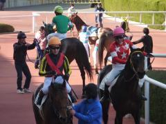 レース後:ワールドエースとレッドブレイゾン