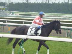 返し馬:レッドバビロン