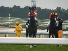 レース直前の輪乗り:レッドバビロン
