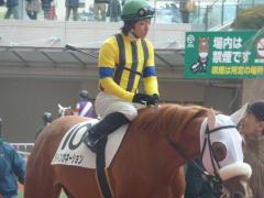 パドック:リインカネーションと川田騎手