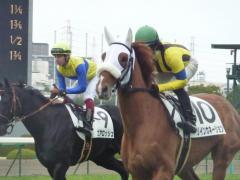 返し馬:リインカネーション