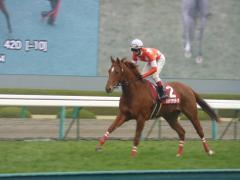 返し馬:レッドクラウディア