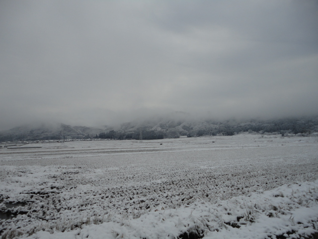 H22.12.16(朝の様子)