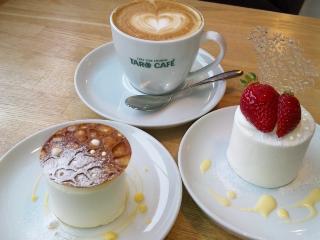 TARO CAFE-3