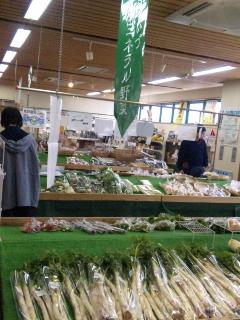 ミネラル野菜コーナー