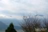 阿蘇(根子岳と高岳)、城山展望台