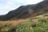 沓掛山北面の紅葉