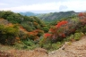 登山路の紅葉(星生山分岐~沓掛山)