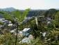 写真37:瑞泉寺分岐~明王院口1