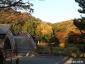 写真10、反橋と紅葉