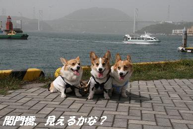 1_5790.jpg