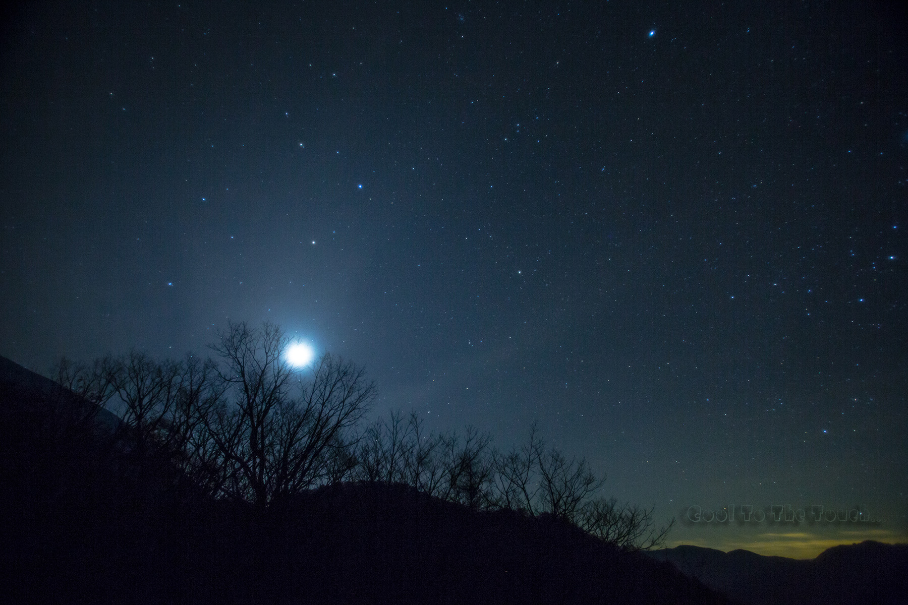 star11003.jpg