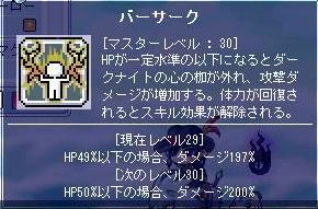 バーサークLv30(MAX)