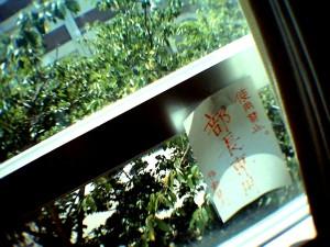 Photo98001.jpg