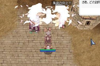 5_20091215171141.jpg
