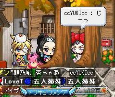 Maple100103_011708.jpg