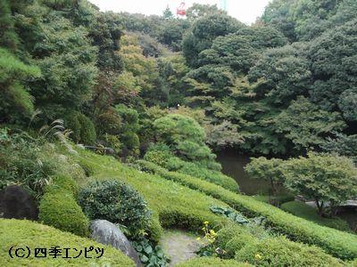 池田山公園 1