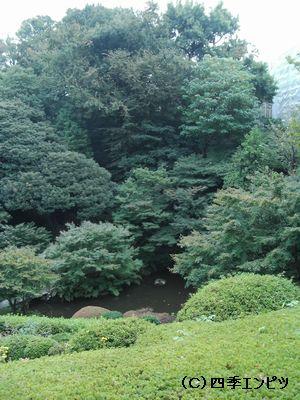 池田山公園 4