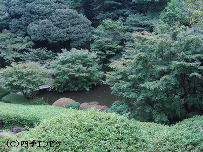 池田山公園 2