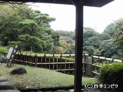 池田山公園 3