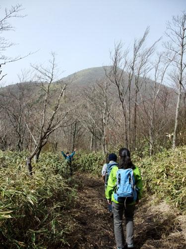 登山道より竜ヶ岳