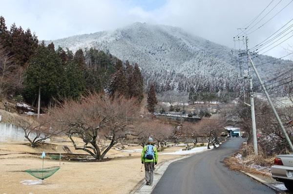 ふもとから見る百蔵山