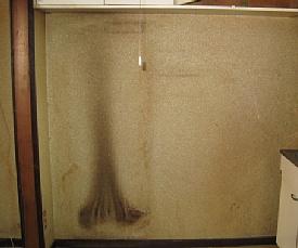 nito-denkiyake.jpg